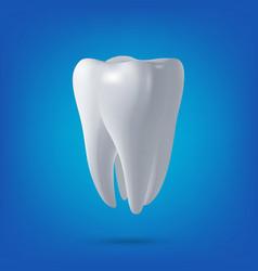 Tooth 3d render vector