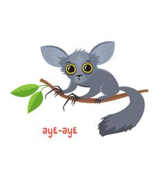 Aye-aye from madagascar in cartoon style vector