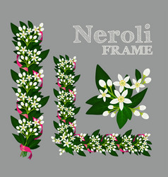 Orange blossom frame with flowers buds and leaves vector