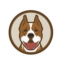 Pitbull boxer dog head mascot in circle vector