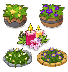 Set of flowers in pots flower beds and candles vector