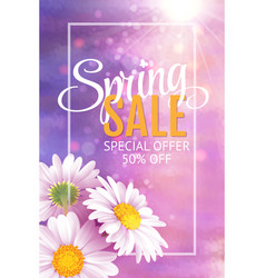 spring sale banner template with daisy flower vector image