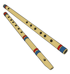 Two bamboo flutes vector