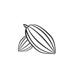 cacao bean mono line logo designs inspiration vector image