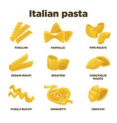Delicious italian pasta types high quality vector