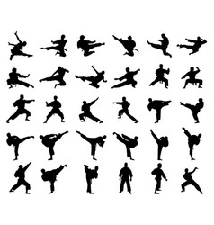 Silhouettes karate fighting vector