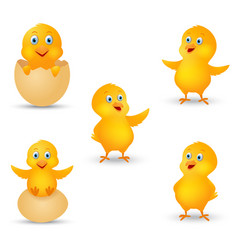 happy chicks cartoon collection vector image vector image