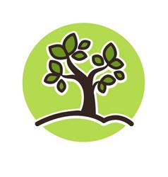 minimalistic green tree growing vector image vector image