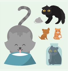 cute cats character different pose funny animal vector image