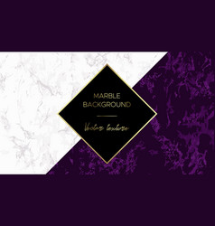 Luxury marble background chic design card vector