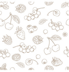 outline hand drawn seamless berry pattern flat vector image