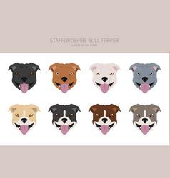 Pit bull type dogs staffordshire bull terrier vector