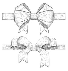ribbon bow hand drawn vintage sketch vector image