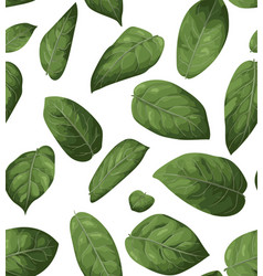 seamless pattern background greenery vector image