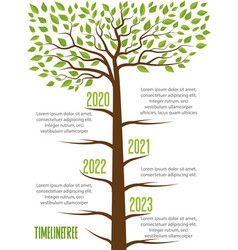 Timeline trees with leaves vector