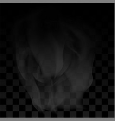 water vapor or transparent smoke on checkered vector image