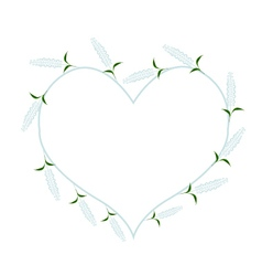 White Sage Flowers in A Heart Shape vector image