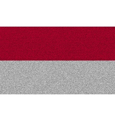 Flags Indonesia on denim texture vector image