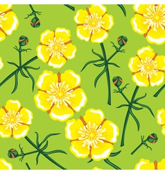 buttercup seamless vector image vector image