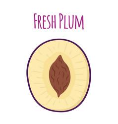 half of ripe purple plum cartoon flat style vector image