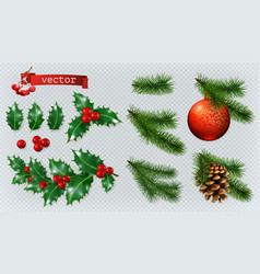 Christmas decorations holly spruce red berries vector