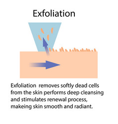 Exfoliation or peeling vector