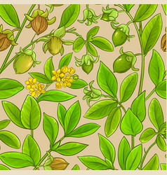 Jojoba branches pattern on color background vector