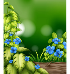 Nature scene with blue flower in garden vector