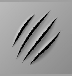 Realistic claw scratches wild animal paw trace vector