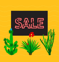 sale discounts with cactus vector image