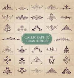 set of ornate calligraphic design elements vector image