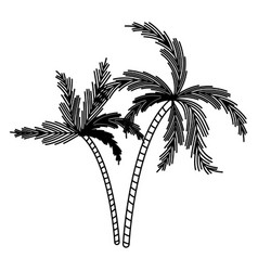 black silhouette with two palm trees vector image