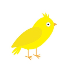 Canary bird Yellow feather Isolated White vector