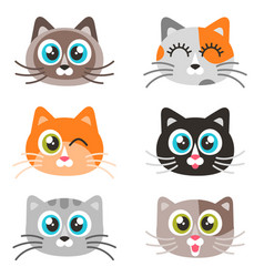 icons of cute cat faces isolated on white vector image