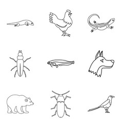 mammal icons set outline style vector image