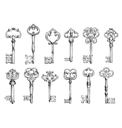Vintage keys sketches with swirl forging vector