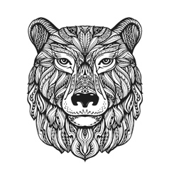 Bear or grizzly head isolated on white background vector