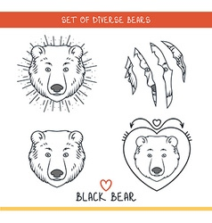 Black bear Set isolated face heads bear in lines vector