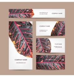 Business cards design leaf texture vector