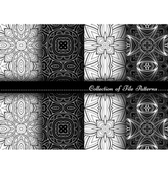 collection black and white seamless patterns vector image