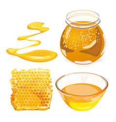 honey in honeycombs in jar vector image