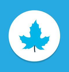 maple icon colored symbol premium quality vector image
