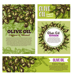 olive oil labels with fruits and green branches vector image