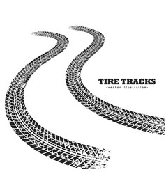 Road tire tracks on white background vector