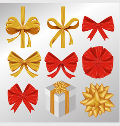 set ribbon bow decoration accessory vector image