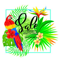 summer sale composition with tropical plants and vector image