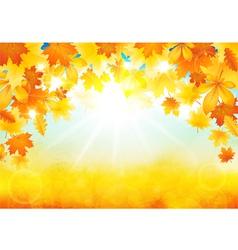 Sunny autumn day vector image