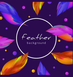 colorful feather background exotic bird feathers vector image