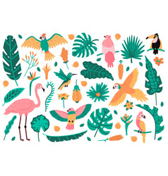 exotic leaves and birds tropical leaves flowers vector image