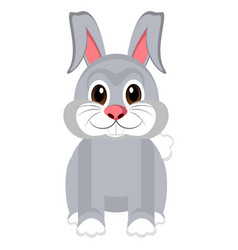 isolated cute rabbit vector image